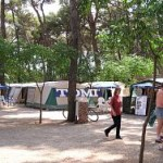 camping tomi pitch